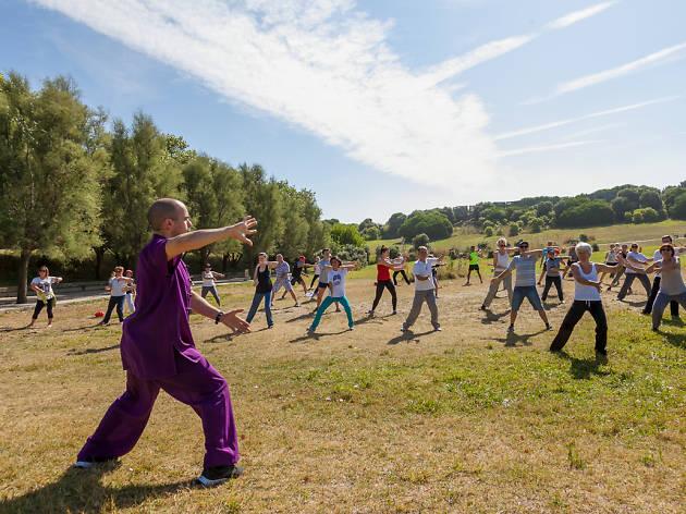 Este sábado celebra-se o Dia Mundial do Tai Chi