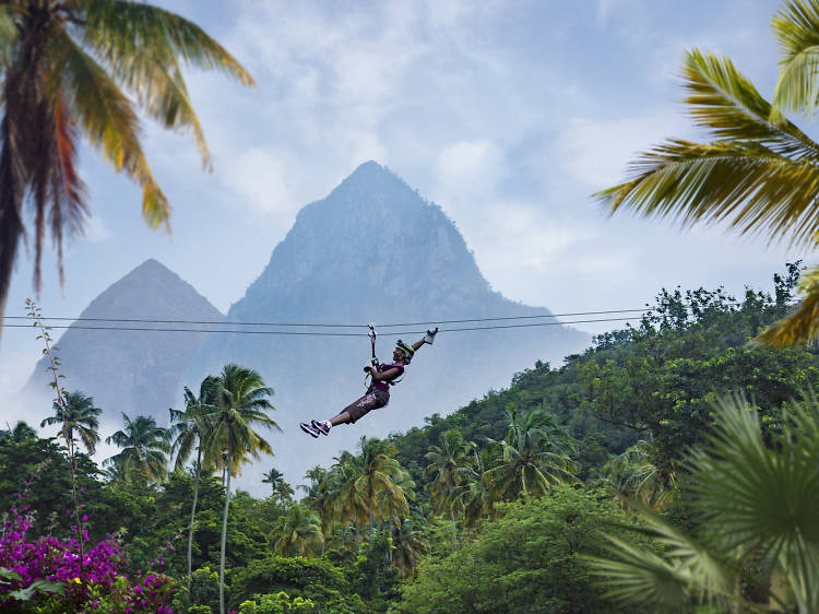 Admire the rainforest by zipline in Morne Coubaril