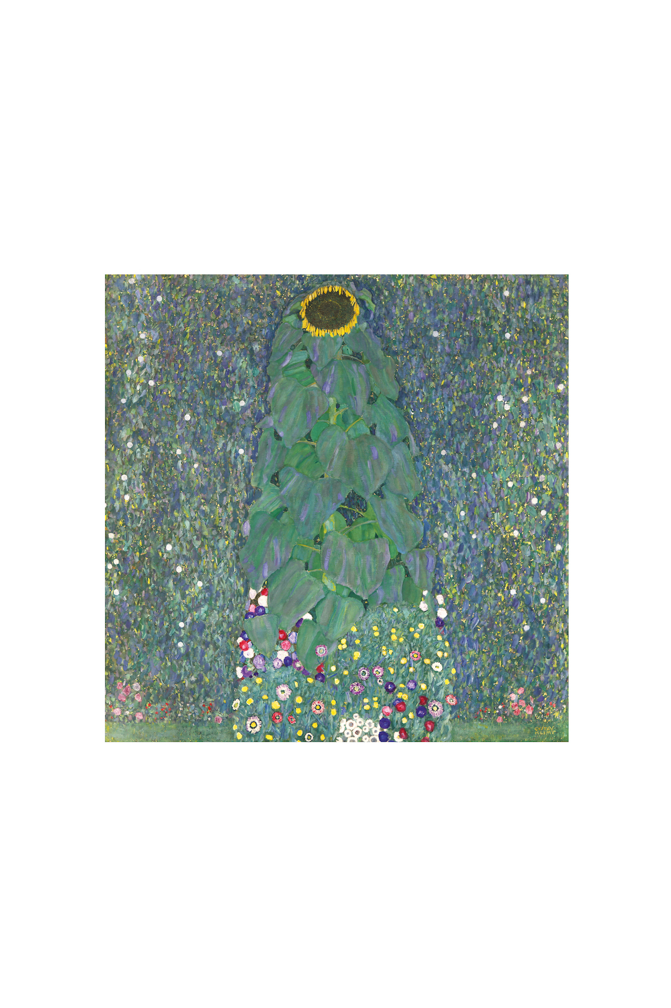 Klimts Sunflower, 1907