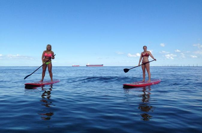 Dolphin Paddleboard Eco Tour