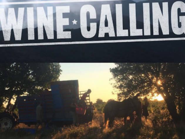 Sous les pavés la vigne: vins nature et happenings à gogo à Belleville