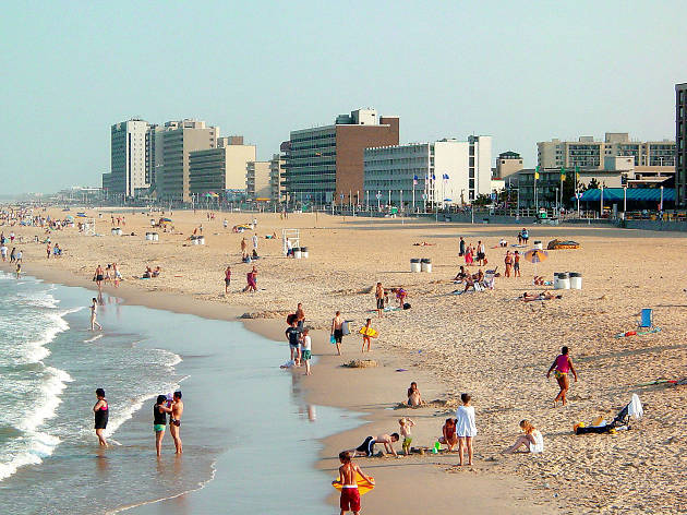 Best Things To Do In Virginia Beach