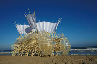 Wind Walkers: Theo Jansen's Strandbeests