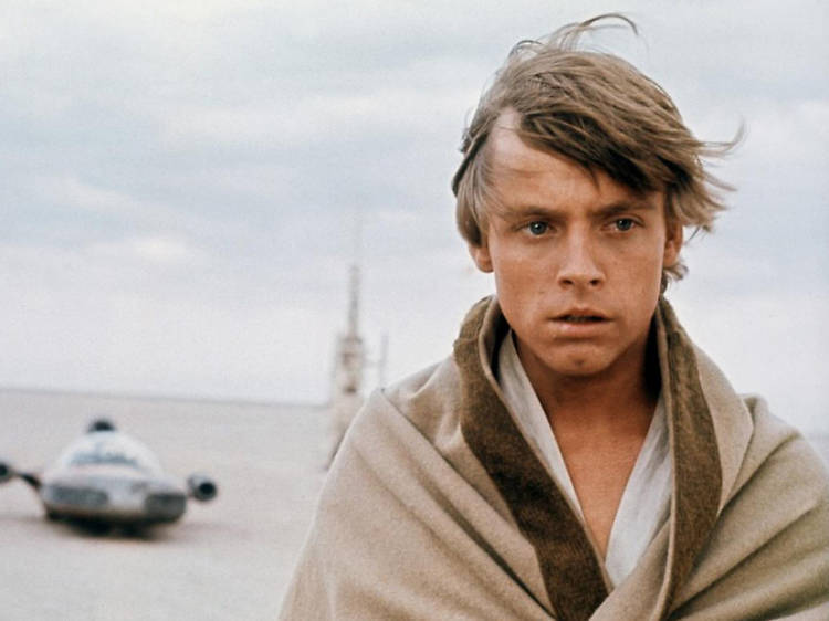 Luke in Star Wars