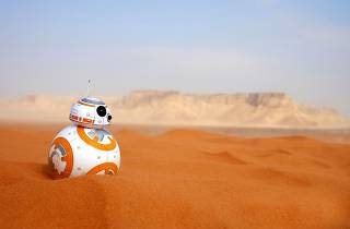 5 fun things to do for Star Wars Day this week