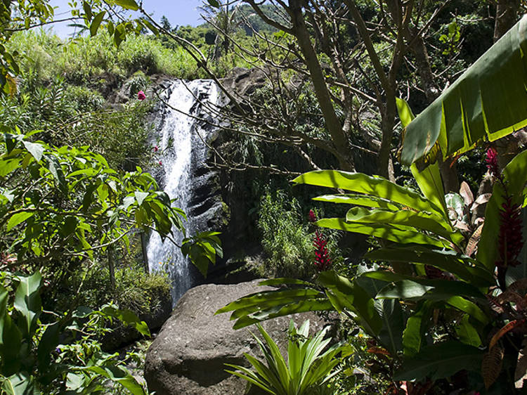Be wowed by waterfalls on the west coast