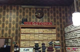 Casa Botónia