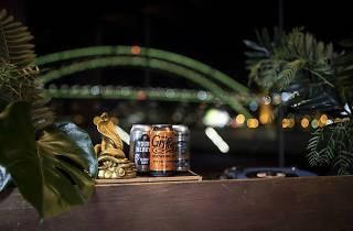 SOH Vivid Midnight Special Bar