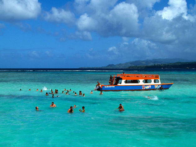 The five best things to do in Tobago