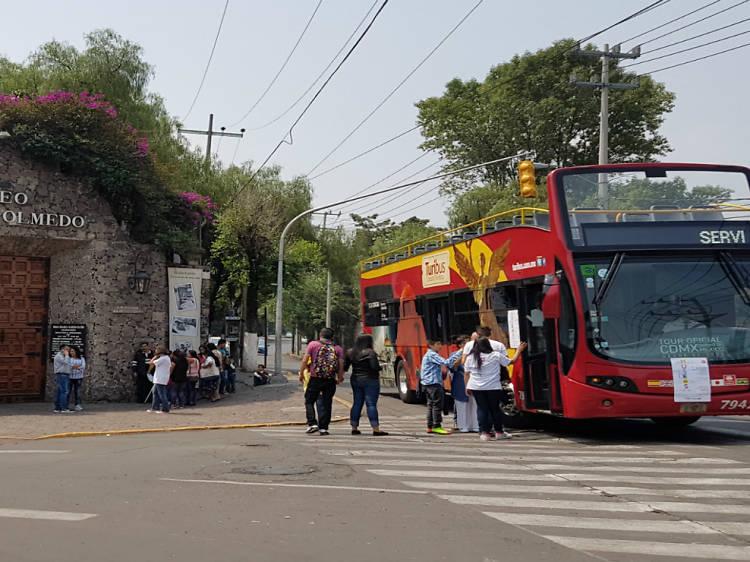 Turibus: ruta especial