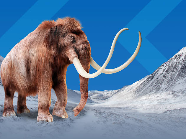 Mammoths– Giants of the Ice Age