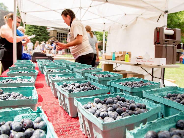 Bluegrass & Blueberries Festival at Peddler's Village