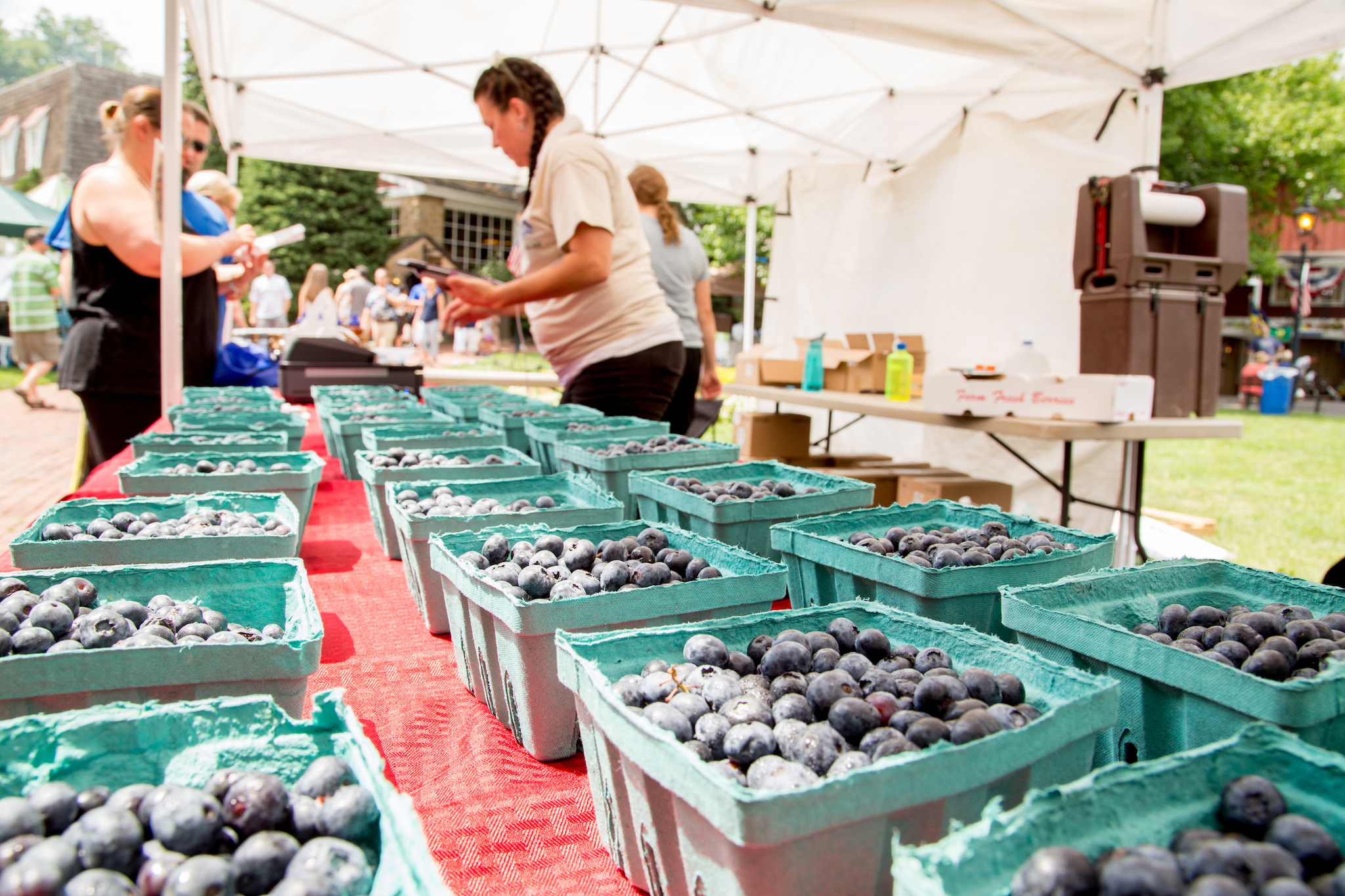 Peddler's Village hosts the annual Bluegrass & Blueberry Festival.