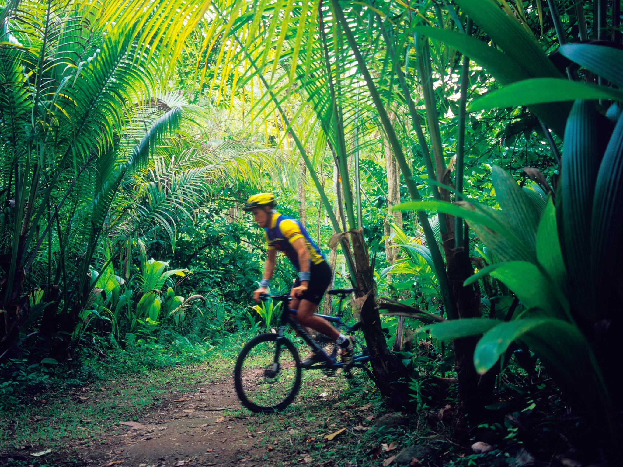 Cycling through a plantation in St Lucia