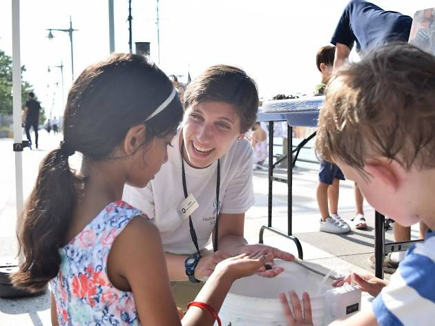 Hudson River Park's new Science Saturday program is perfect for curious kids