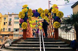 Temps de Flors 2018 (© Aída Pallarès)