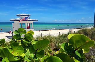 Mid-Beach Miami