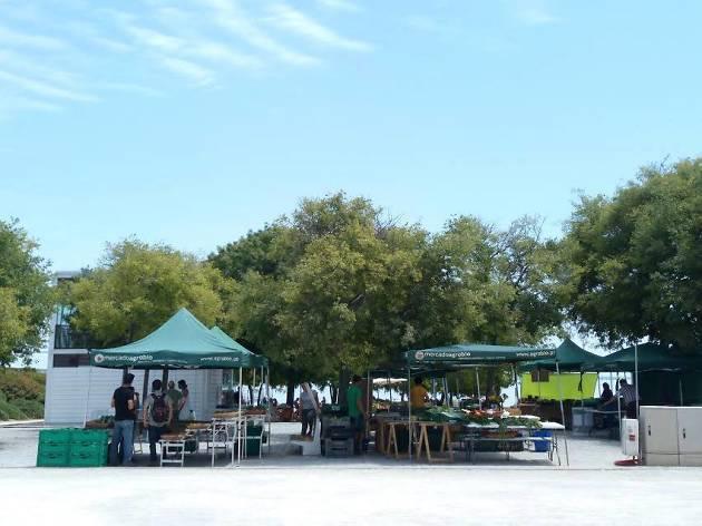 Mercado Agrobio Parque Nações