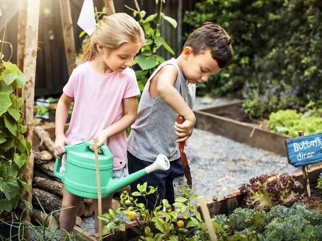Best Kids' Gardening Spots Including Children's Gardens