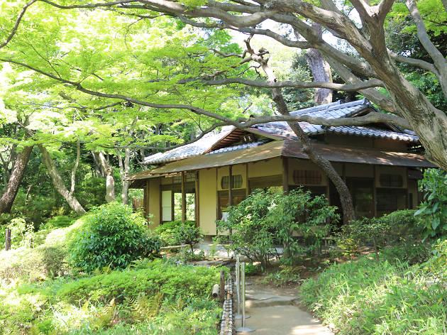 Best picnic parks in Tokyo