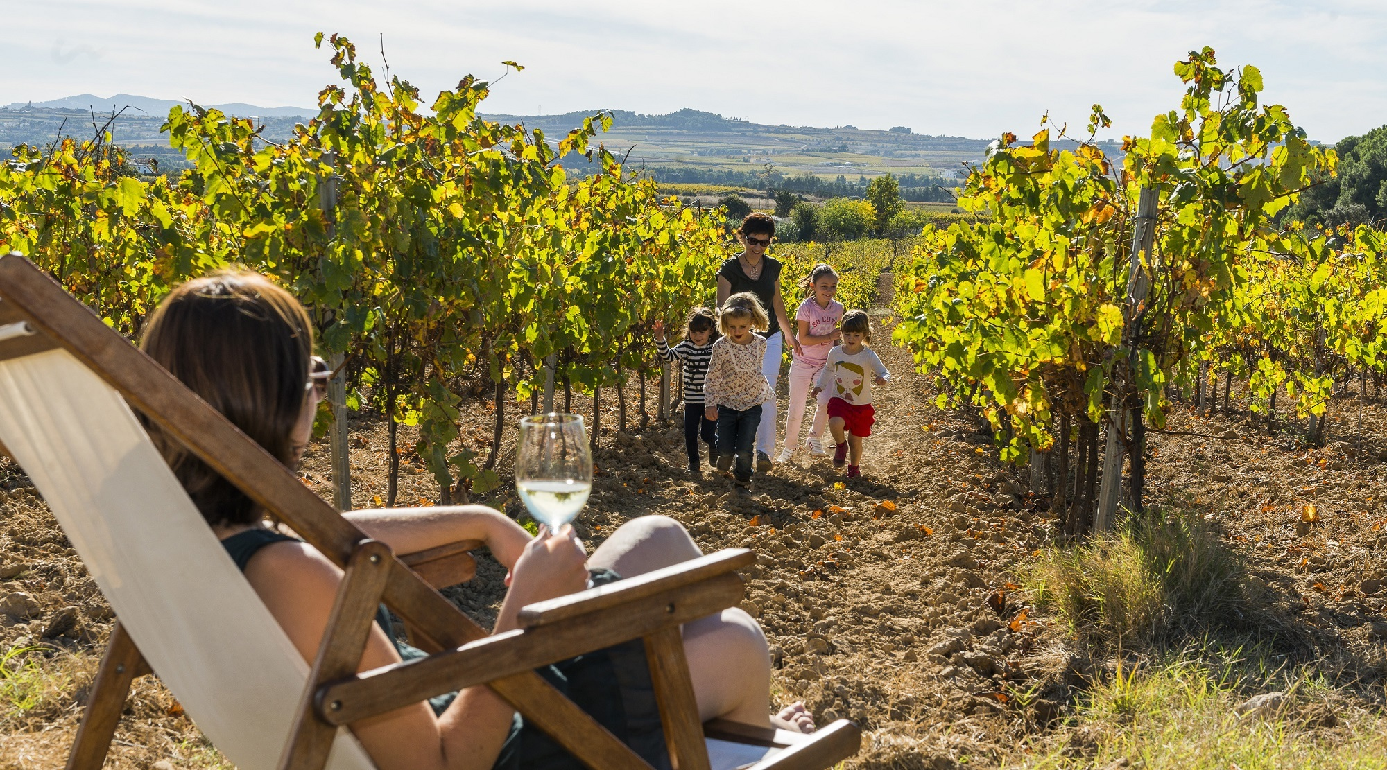 Disfrutad de la cultura del vino y el cava en el Alt Penedès