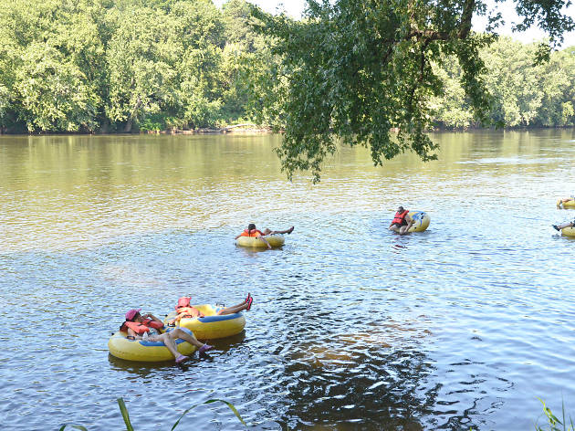 Go floating on a tube in the Great Egg Harbor River in Mays Landing, New Jersey, with Palace Outfitters.