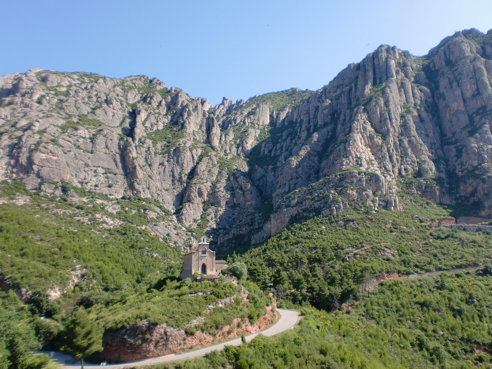 Conoceréis el oleoturismo con esta visita al Baix Llobregat