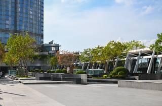 IFC Rooftop Garden