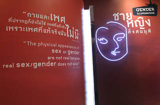 Gender Illumination