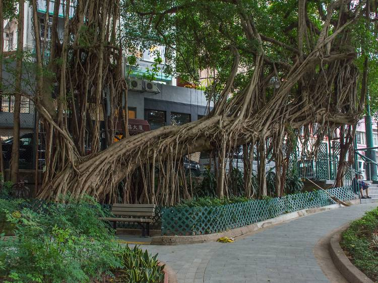 Blake Garden, Sheung Wan