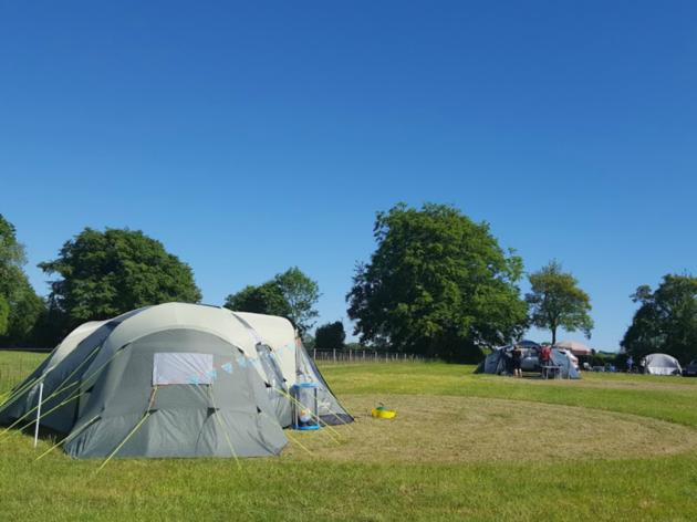 Tent in Grassy Field