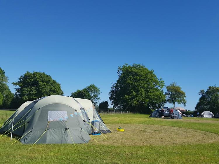 Holden Farm Camping, Hampshire