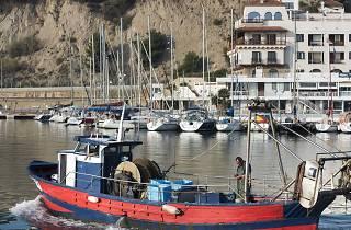Llotja de pescadors d'Arenys de Mar
