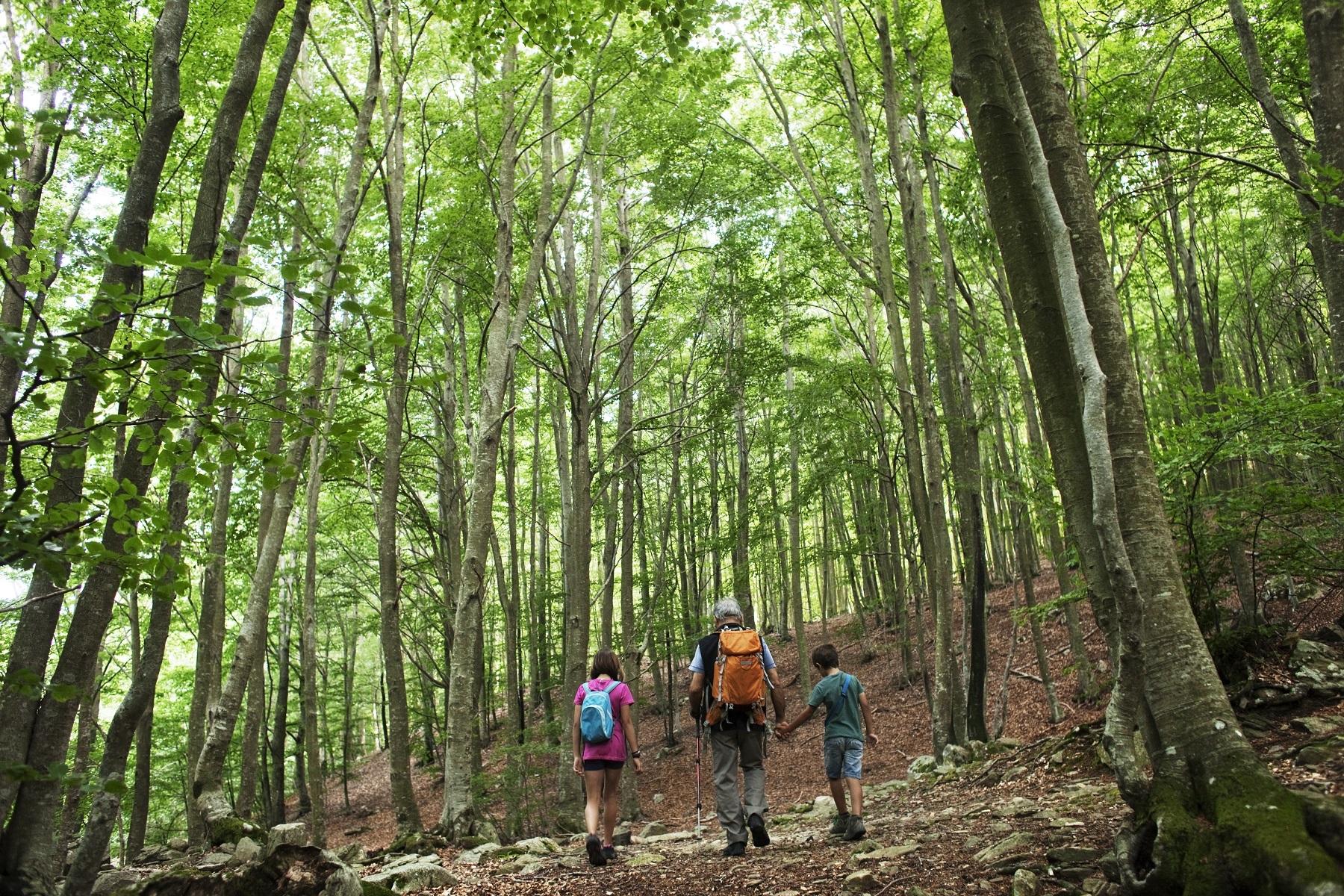 Descobriu el Montseny amb una escapada al Vallès Oriental