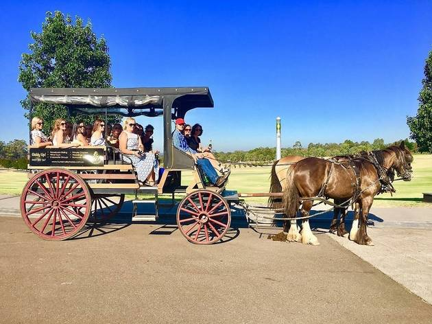 Tour group sits on horse-drawn carriage.