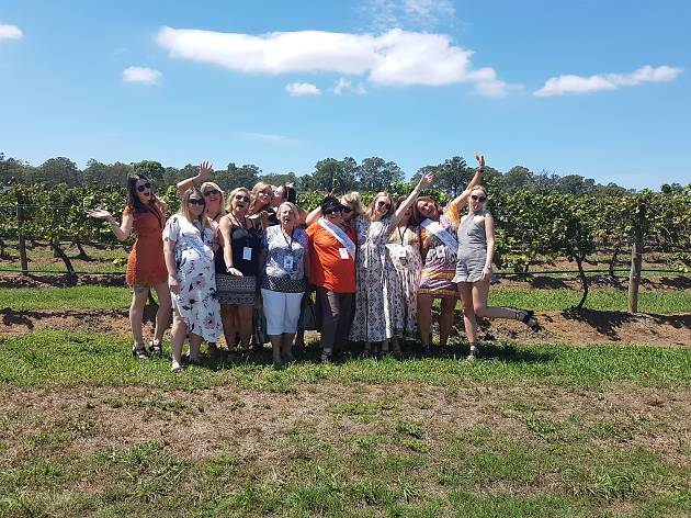 Group stands in vineyard.
