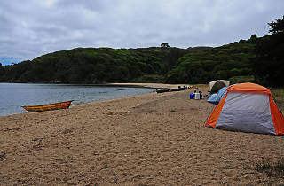 White Gulch Beach, Tomales Bay
