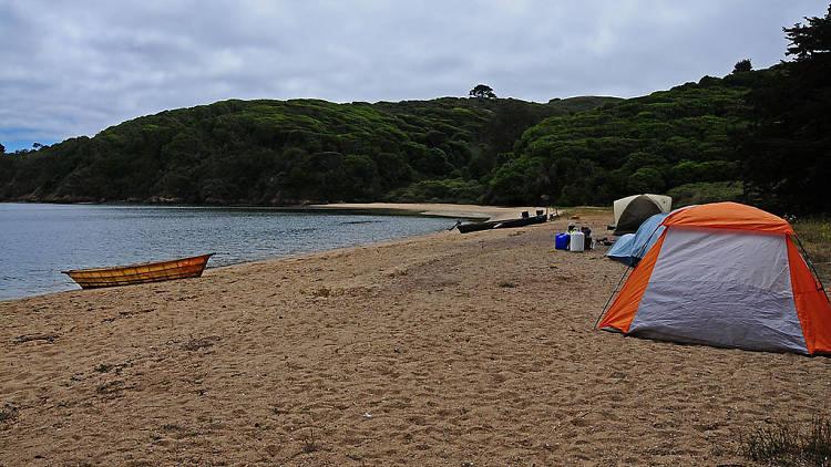 White Gulch Beach, Tomales Bay