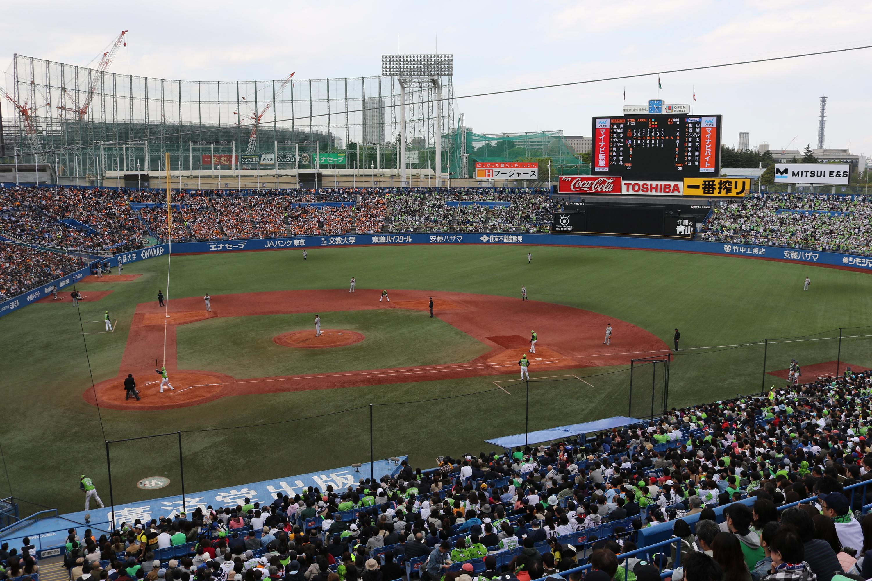 jingu stadium | things to do in shinanomachi, tokyo