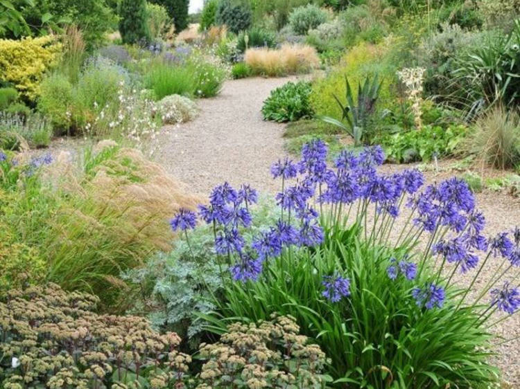 The Beth Chatto Gardens, Essex