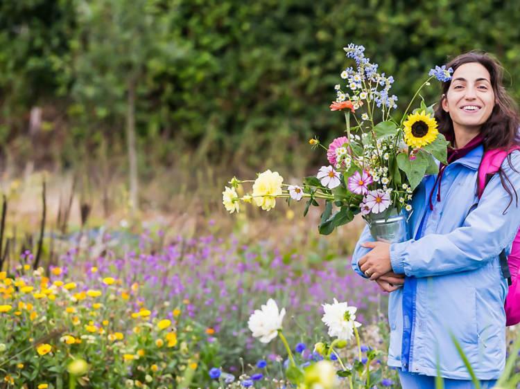 Blooming Green, Kent