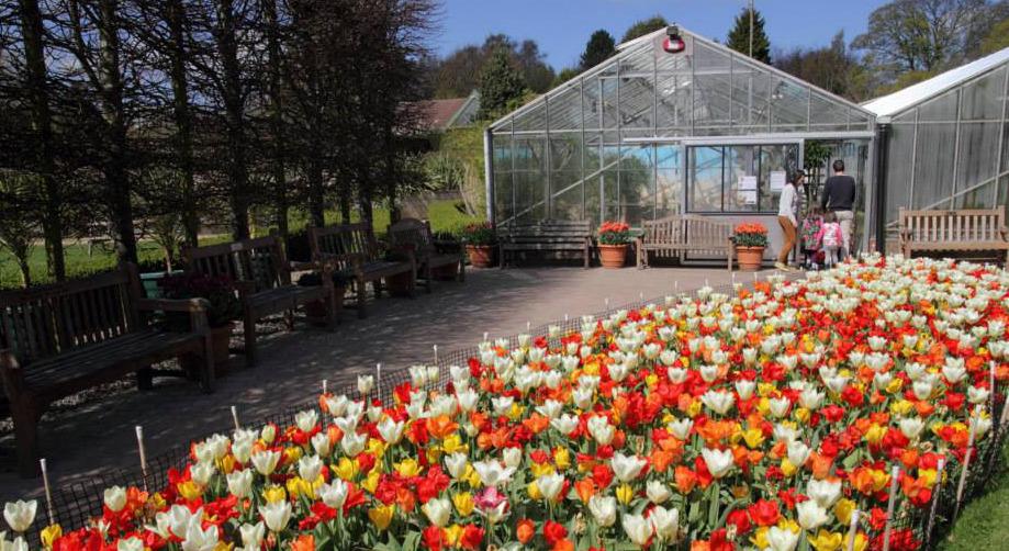 Best TTD Durham Botanic Garden