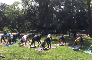 Lisboa  os melhores sítios para praticar yoga 4fd8e824659c