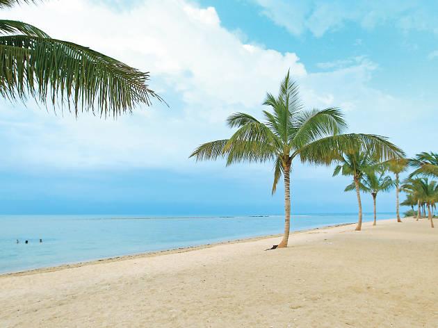 A scenic beach