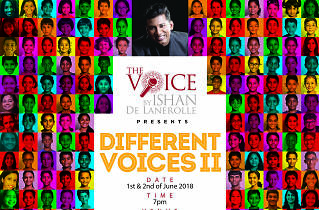 Different Voices II