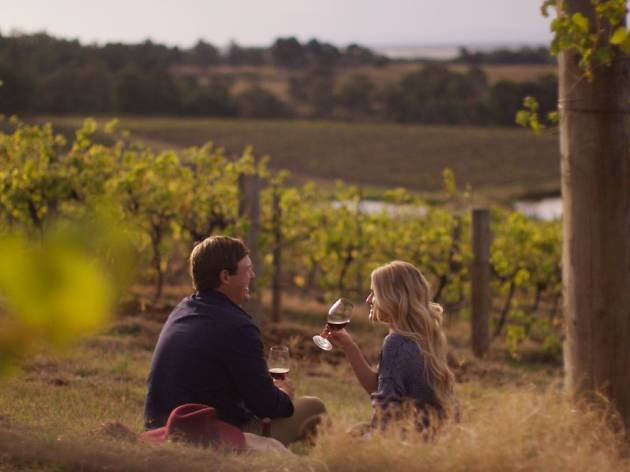 Couple sits in vineyard drinking wine.