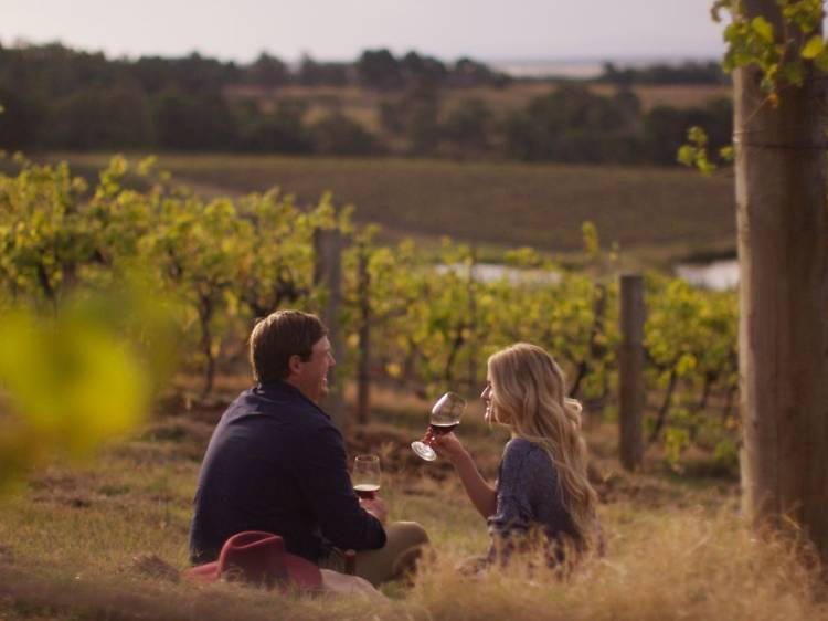 Go on a Hunter Valley wine tour