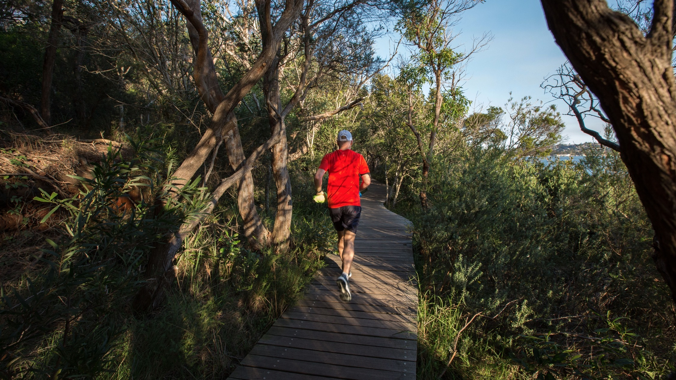 The best running routes in Sydney