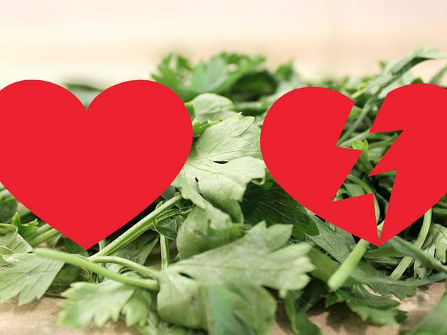 coriander love or hate