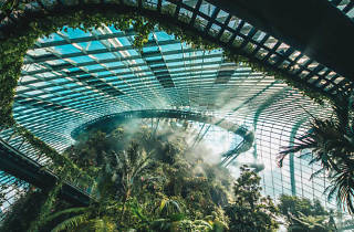 Gardens by the Bay – Cloud Forest